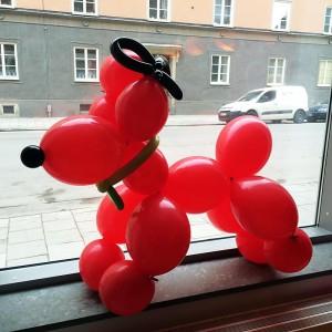 Stor ballonghund
